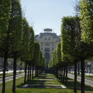 Payroll taxes and contributions reduced in Hungary